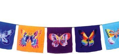 F0013_Butterfly